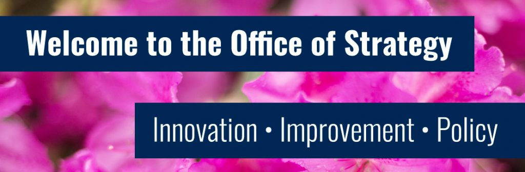 Welcome to the Office of Strategy - Innovation - Improvement - Policy